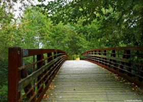 The Bridge We All Walk by LonelyBookWorm