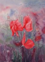 Magenta Sweet Pea by louise-art