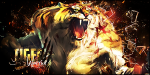 Tiger by oOScarfaceOo