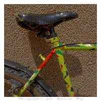Bicycle - 001 by laurentroy