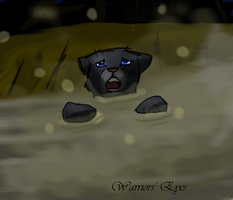 91. Drowning-Bluestar by Warriorseyes
