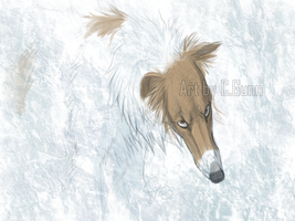 Whiteout by InstantCoyote
