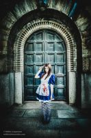 American McGee's Alice. Bloody cosplay by hmcindie
