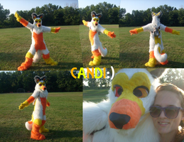 Candi The Husky fursuit by Doodle-Dreams