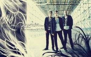 Muse - Undisclosed Wallpaper by carolmunhoz