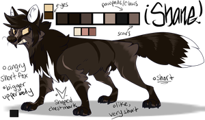 Feral Shane 2013 by dRaWiNgWiThHeArT