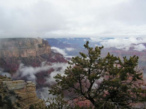Grand Canyon by Abilene105