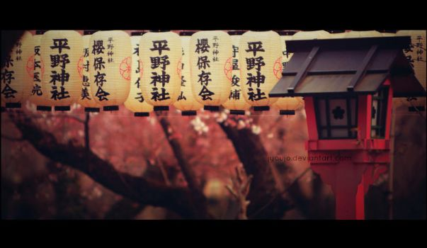 falling ,faiths and blossoms by jyoujo