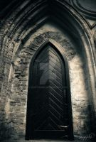 The Gothic Doors by noistromo