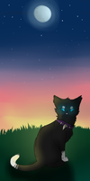 Scourge's sunset by Havoqe