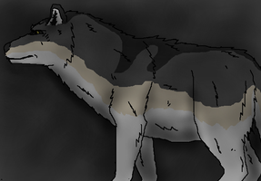 Dire Wolf, Canis Dirus by TheSpiderAdventurer