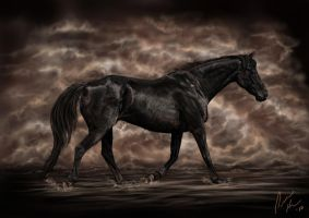 Out of the Mists - Black Gold by sunwolf29