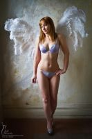 If your going to shoot wings, do it right... by RobertSleeper