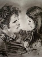 Edward and Bella by happymint
