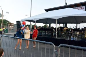 2014 Fourth of July Entertainment, the USO 20 by Miss-Tbones