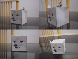 Doge Cubeecraft by euamodeus