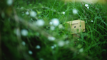 Danbo079 by inzanenewbie
