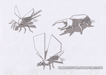 Insect Study by ParadiseFever