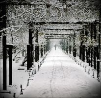 Crystal Path by boomer129