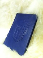 Doctor Who Tardis Leather Book (#8) by MerrillsLeather