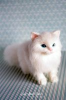 Needle felted white kitty by SaniAmaniCrafts