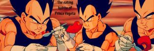 Vegeta banner 3 by Amersss
