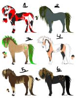 stallion adopts by finnicky-dragon