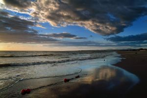 Reflections in the sand N 2 by minotauro9