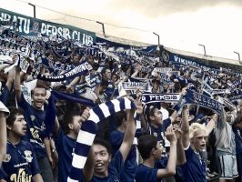 supporter of PERSIB by authismframe