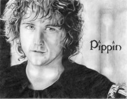 Peregrin Took by friedChicken365