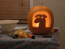 Greyhound Pumpkin, Lights On by Champineography