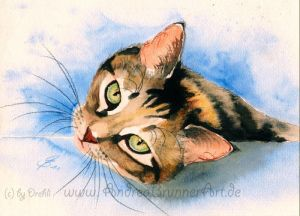Cat watercolor by Drehli