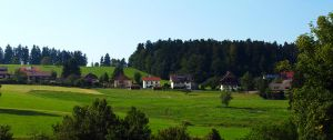 The Beauty of the Black Forest01 by abelamario