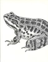 Stipple Frog by Valm-Esoobac