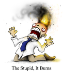 The Stupid, It Burns by Plognark