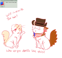 WTF HAT by AskPirate-EnglandCat