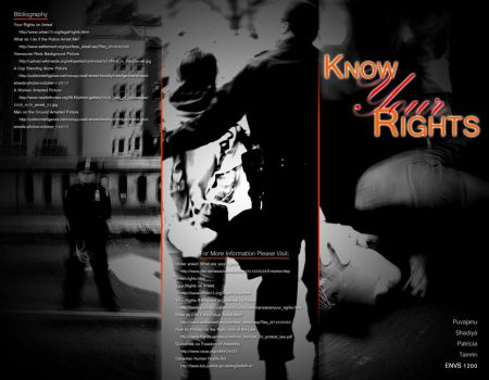Know Your Rights Pamphlet Outside by ShilloCjbNet