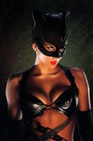 Catwoman by MishaART