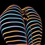 2634s-AK Striped Thighs Abstract Female Vulva by artonline