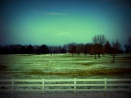 Field N Fence by bigpaganjames
