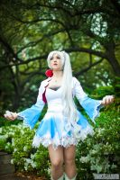 Weiss Schnee Standing Tall by HollyGloha