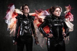 Hunger Games by OtherNick