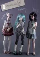Comparison with Narae doll by Cerisedolls
