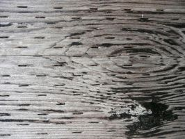 Texture: Wood Grain I by frameofthoughts