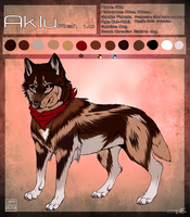 Aklu Ref sheet 2013. by AgentWhiteHawk