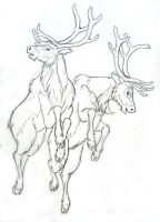 More Reindeer by Lizzy23