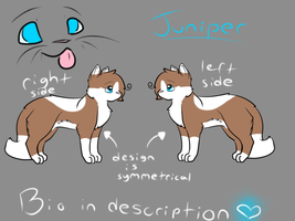 Juniper Reference Sheet by Flamestripes
