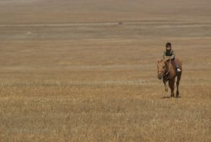 mongolia - horse and boy by Whisky-Chips