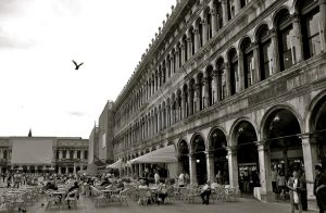 Venice: Piazza San Marco 3 by bigbirdsinsmallcages