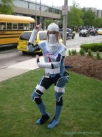 Sheik Cosplay by Skuldier